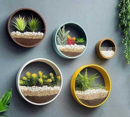 Sáng tạo ô trang trí tường bằng cách trồng cây tiểu cảnh