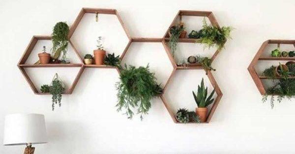 Các ô trang trí cũng có thể là hình tổ ong, hình tam giác, hình tròn,...tăng vẻ độc đáo cho bức tường