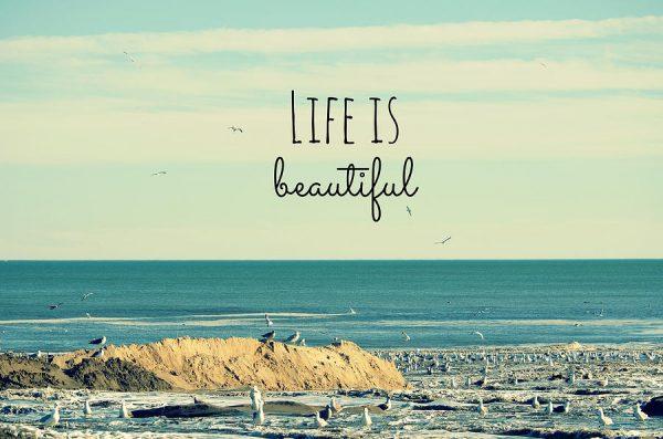 Kết quả hình ảnh cho cách sống đẹp và có lý tưởng