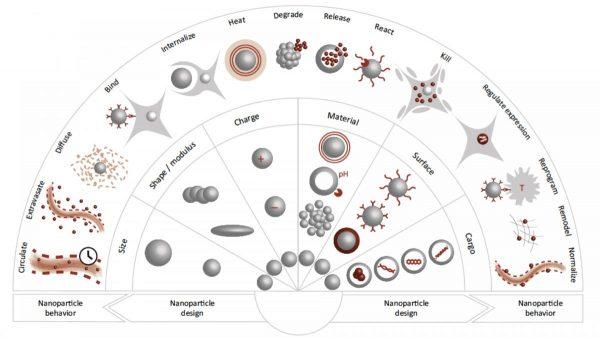 Cancer Nanomedicine | nanomedicine